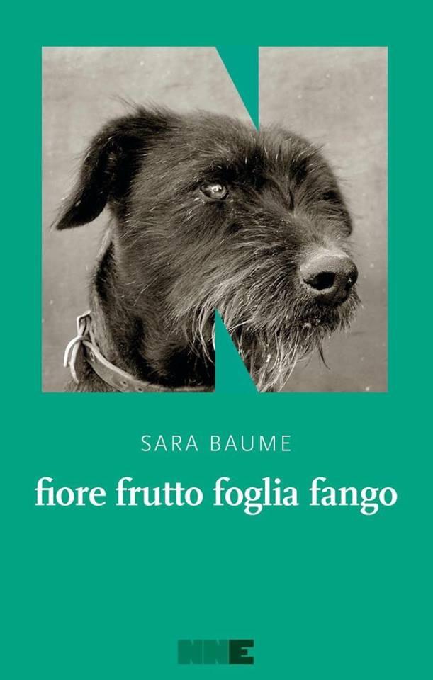 Sara Baume - fiore frutto foglia fango - NN Editore - Le recensioni in LIBRIrtà