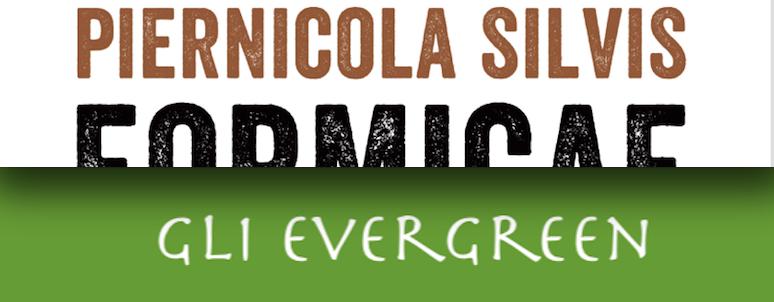 Piernicola Silvis - Formicae - Sem Libri - Gli evergreen - Video recensione