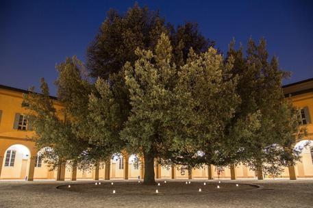Festival della Fiaba, dal 7 al 17 giugno presso il complesso San Paolo a Modena